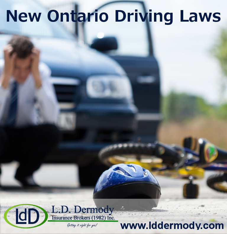 new driving laws Traffic laws and driving rules for the state of florida.
